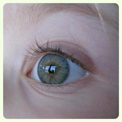 Eye Care Exams inside the Santa Rosa Costco